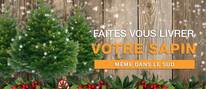 Votre Sapin de Noël ? Directement chez vous ! ED blog Sapins de Noel
