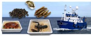 fruits de mer 300x120 Vos homards et tourteaux vivants, livrés chez vous en quelques clics !