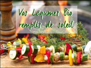 legumes du soleil 300x223 Tout en Bio !