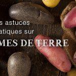 La pomme de terre : conseils et astuces Blog Patate 150x150
