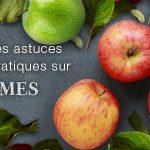 La pomme : présentation, production, consommation Blog Pomme 150x150