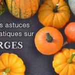LES COURGES : variétés, saisonnalité, préparation… Blog courges 150x150