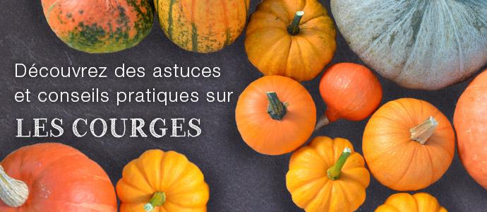 LES COURGES : variétés, saisonnalité, préparation… Blog courges