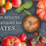 La tomate sous toutes ses formes ! Blog Tomates 150x150