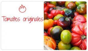 La tomate sous toutes ses formes ! originales 300x177