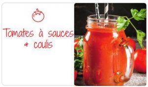 La tomate sous toutes ses formes ! sauce 300x177