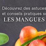 Les délices de la mangue BLOG mangue 150x150