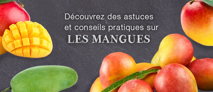 Les secrets de la mangue BLOG mangue