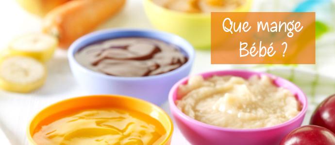 L'alimentation de Bébé de 0 à 12 mois BLOG AlimentationBB2