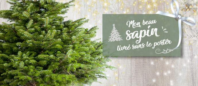 Livraison de sapins de Noël à domicile ! BLOG sapin