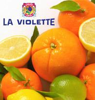 Producteur La Violette chez houra