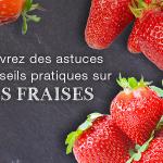 La fraise: que cache le fruit préféré des Français ? Blog fraise 150x150