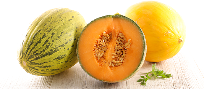 Le melon, à savourer tout l'été ED Blog Melon